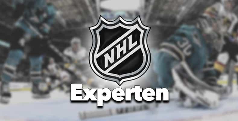 NHL Experten bild