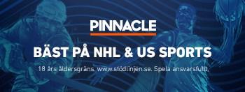 Pinnacle Banner